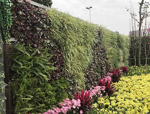 贵州立体绿化