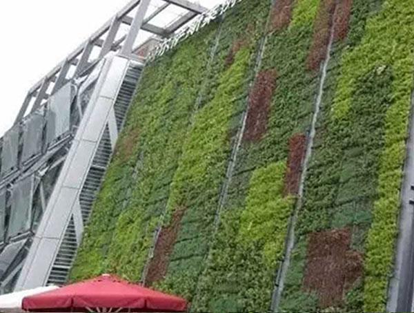 贵阳立体绿化安装